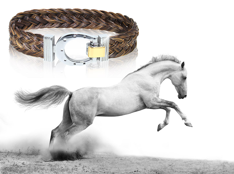 Equus Collection